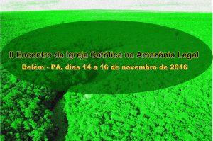 amazonia-desmatamento