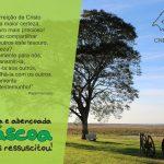 Mensagem de Páscoa do Regional Sul 3 da CNBB