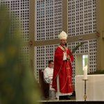Domingo de Ramos: Igreja vivencia a Semana Santa