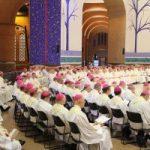 Igreja no Brasil conclui 2019 com 479 bispos e nove dioceses vacantes